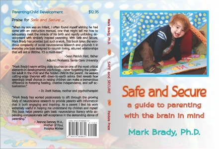 Safe & Secure COVER 021409