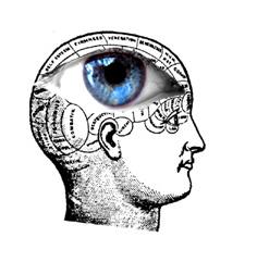 mindsight-G-Gawne-Kelnar