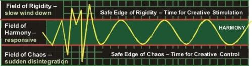 Chaos Rigidity Image