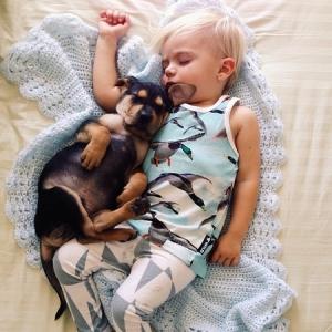 baby_puppy_nap