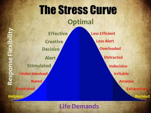 The Stress Curve