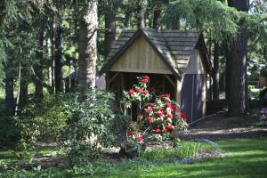 wood-chapel-red-rhodies