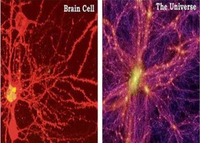 brain-universe513