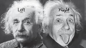 Einstein brain.jpg