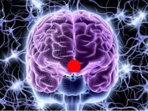 Prefrontal Ajna