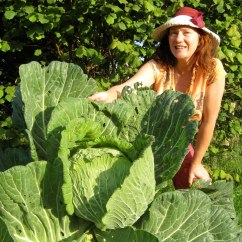 Alanna_Moore-Giant_Cabbage.jpg