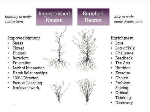 Impoverished Neurons